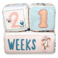 Image of Winnie the Pooh Plush Milestone Blocks for Baby # 1
