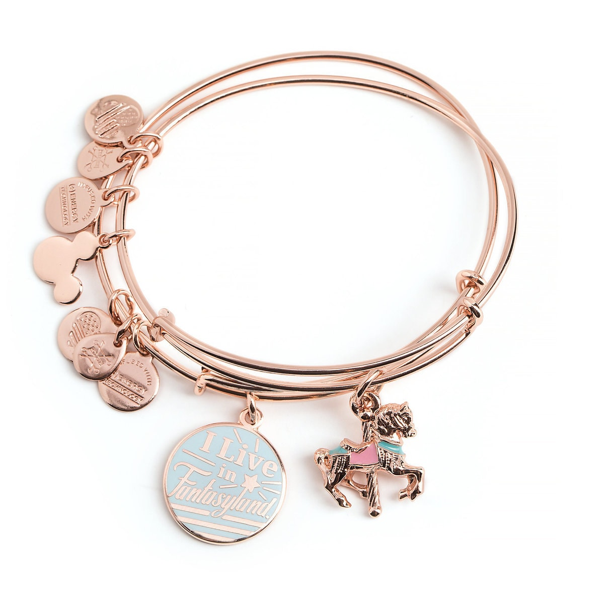 8ab947a0ae8ffc Product Image of ''I Live in Fantasyland'' Charm Bangle by Alex and