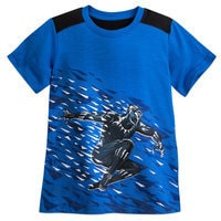 Image of Black Panther Colorblock T-Shirt for Boys # 1