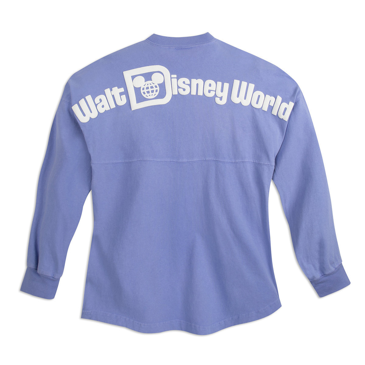 Image result for disney spirit jersey