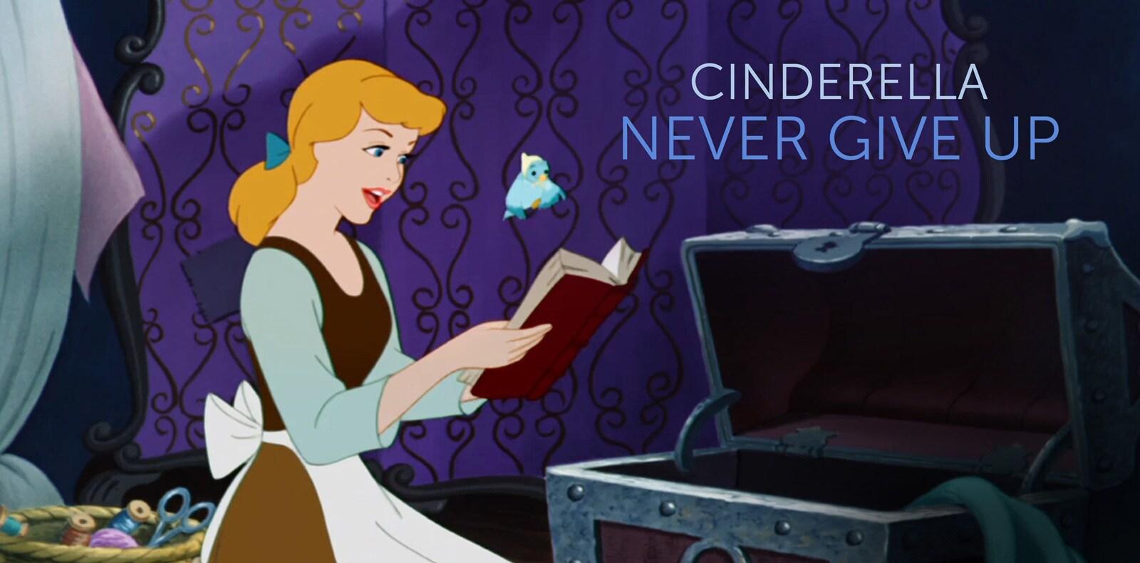 Cinderella AU - character page flex