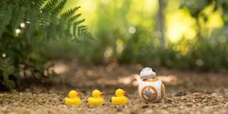 Ein Tag im Leben eines Sphero BB-8