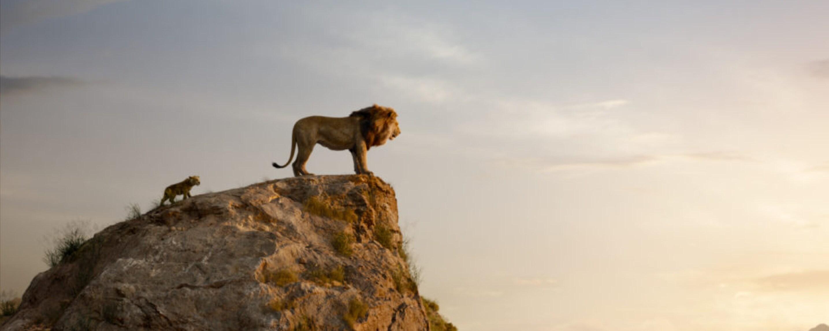 LE ROI LION – UN DÉMARRAGE IMPÉRIAL !