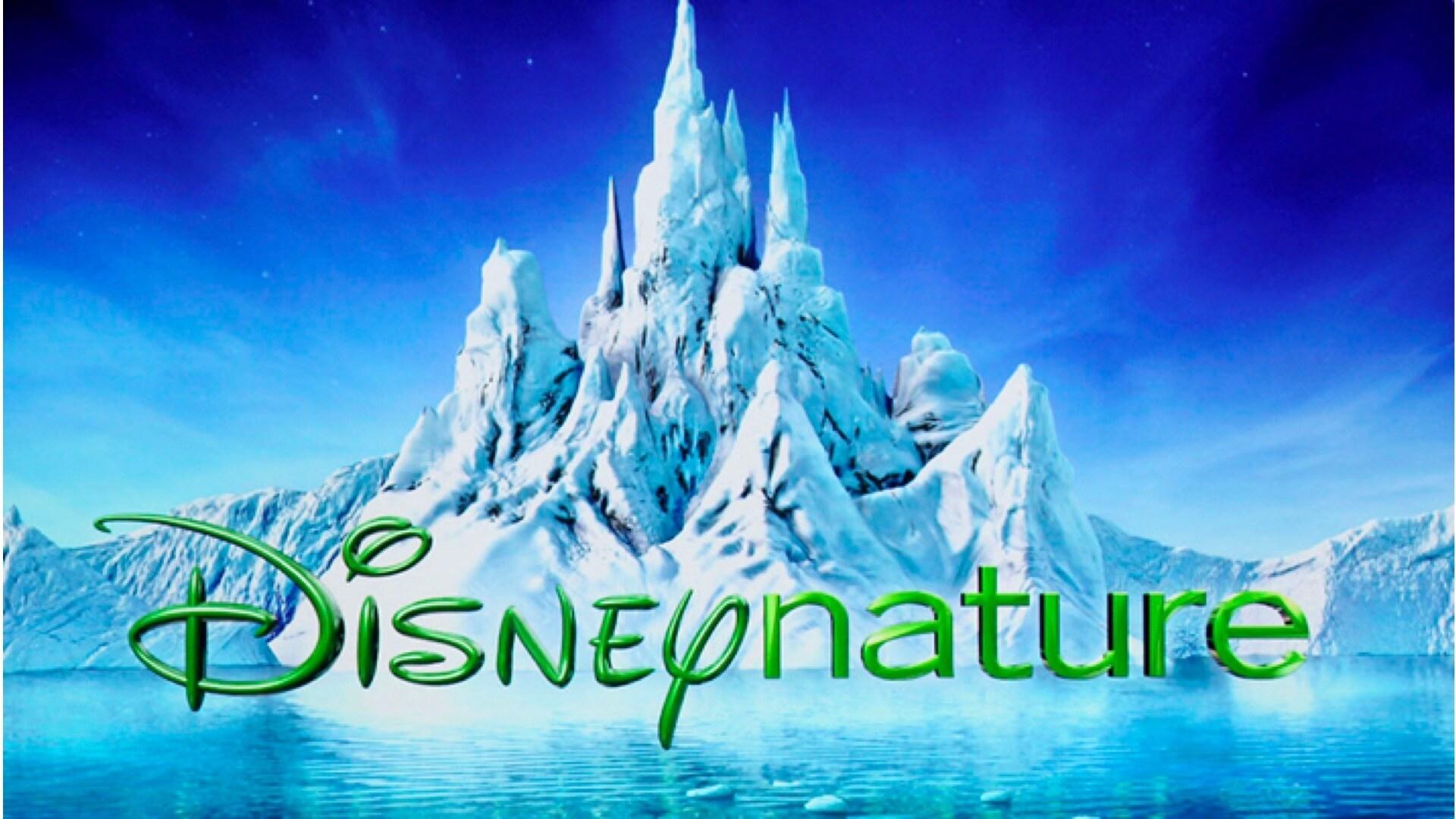 Créé par Jean-François Camilleri, PDG de Disney France, Disneynature fait renaître les grands films animaliers car « la Nature raconte les plus belles histoires » comme ceux de Walt Disney 60 ans plus tôt.