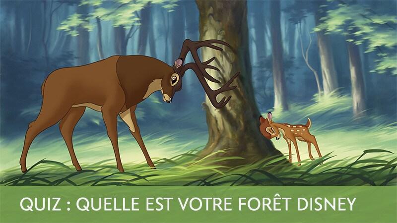 Balade en forêt avec Disney