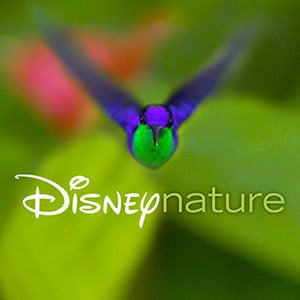 Vidéos Disneynature