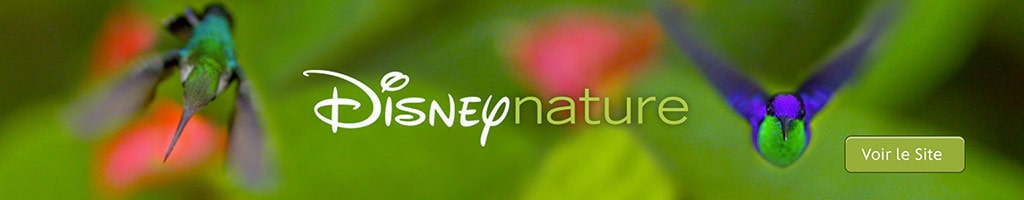 Page Hero Short - Disney Nature