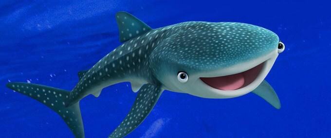 5 bonnes raisons de protéger les océans