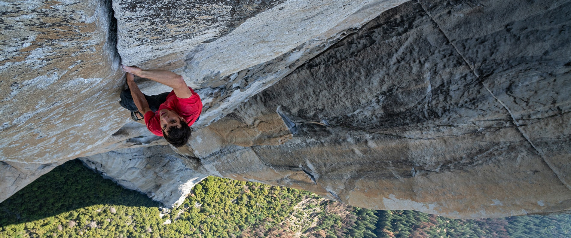 Free Solo - Hero - Film Site (No Gradient)