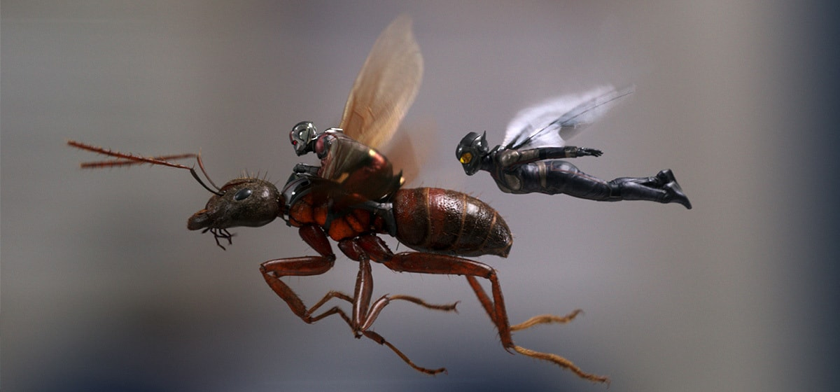 Paul Rudd as Ant-Man riding Ant-thony and Evangeline Lilly as Wasp in the movie Ant-Man and the Wasp