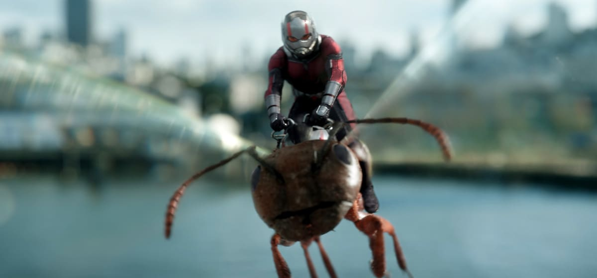 Paul Rudd as Ant-man riding Ant-thony (an ant) in the movie Ant-man and the Wasp