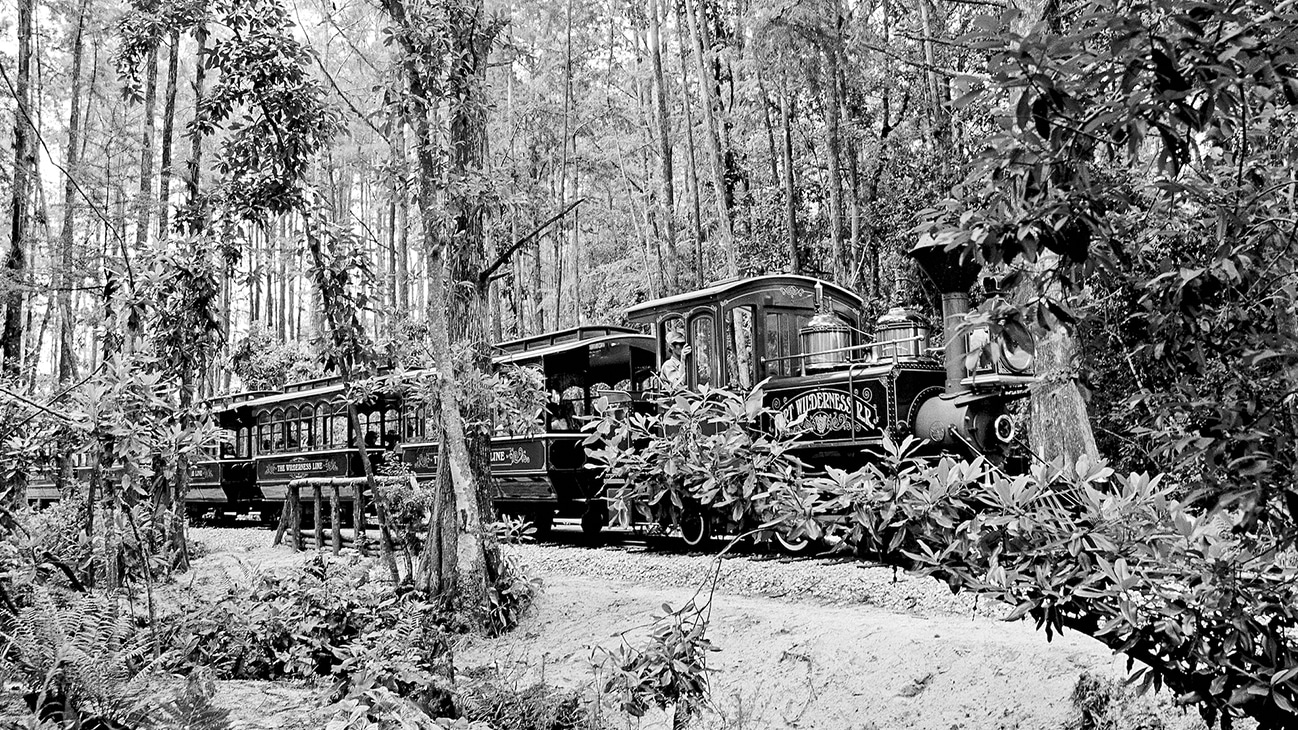Image of a the Disney train locomotive and passenger cars.