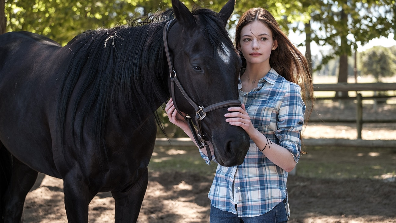 A girl petting a horse from the movie Black Beauty.