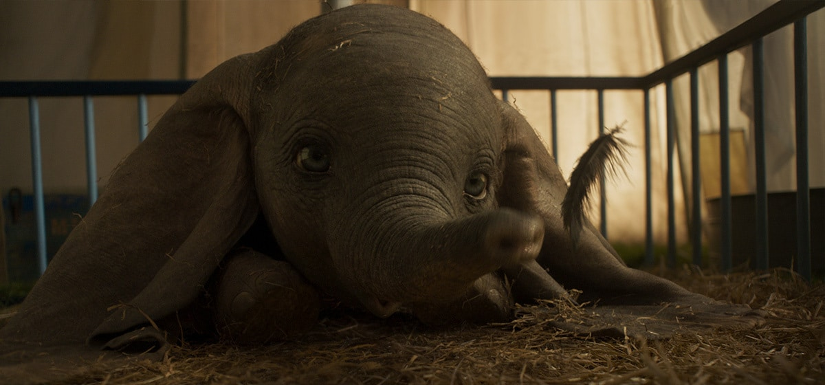 """Dumbo blowing a feather from the movie """"Dumbo"""""""