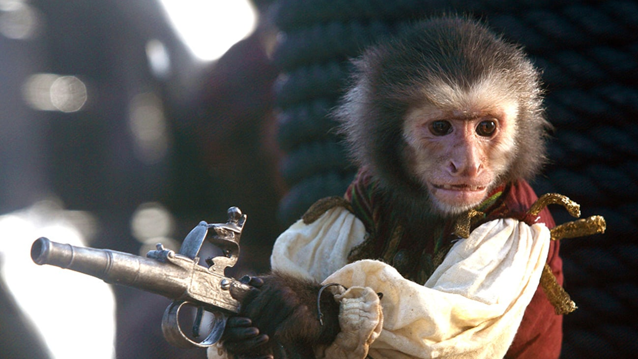 Jack the monkey in the Disney movie Pirates of the Caribbean: At World's End.