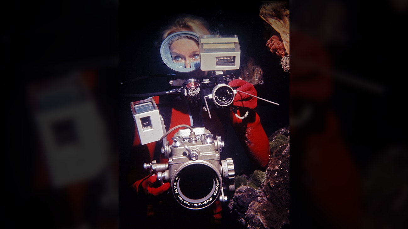 Valerie Taylor underwater with camera equipment, 1970. (photo credit: Ron & Valerie Taylor)