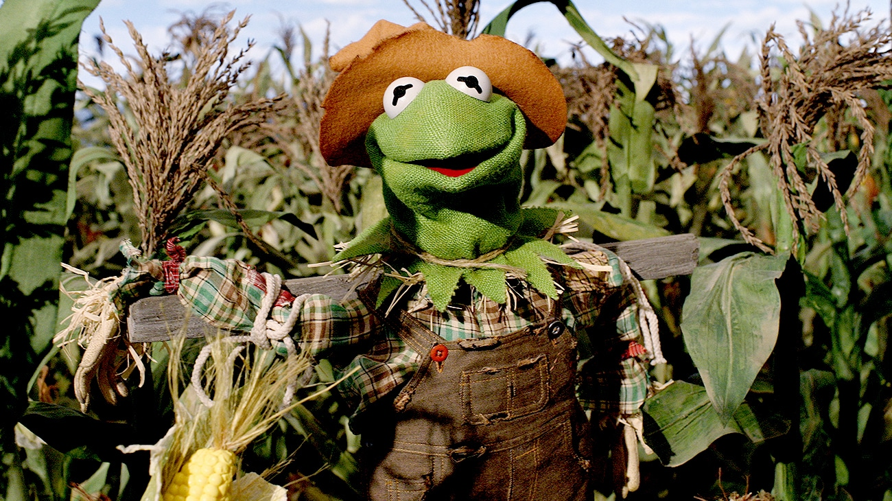 Kermit the Frog as the Scarecrow in The Muppets' Wizard of Oz