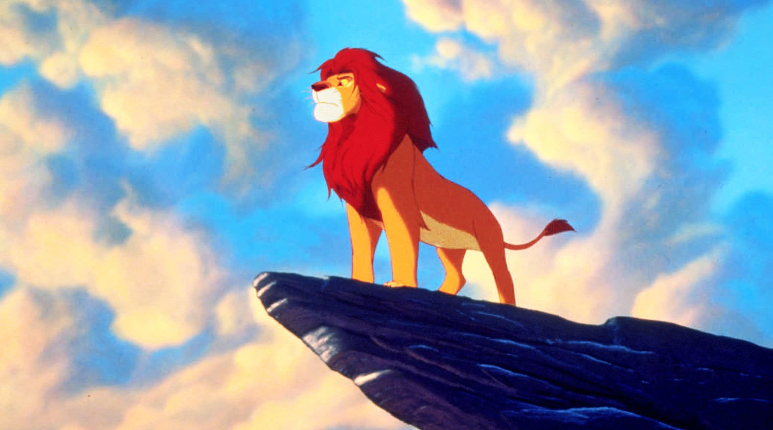 The Lion King Gallery  Disney Movies