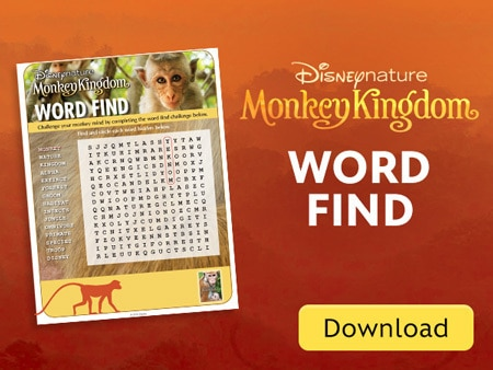 Monkey Kingdom- Word Find