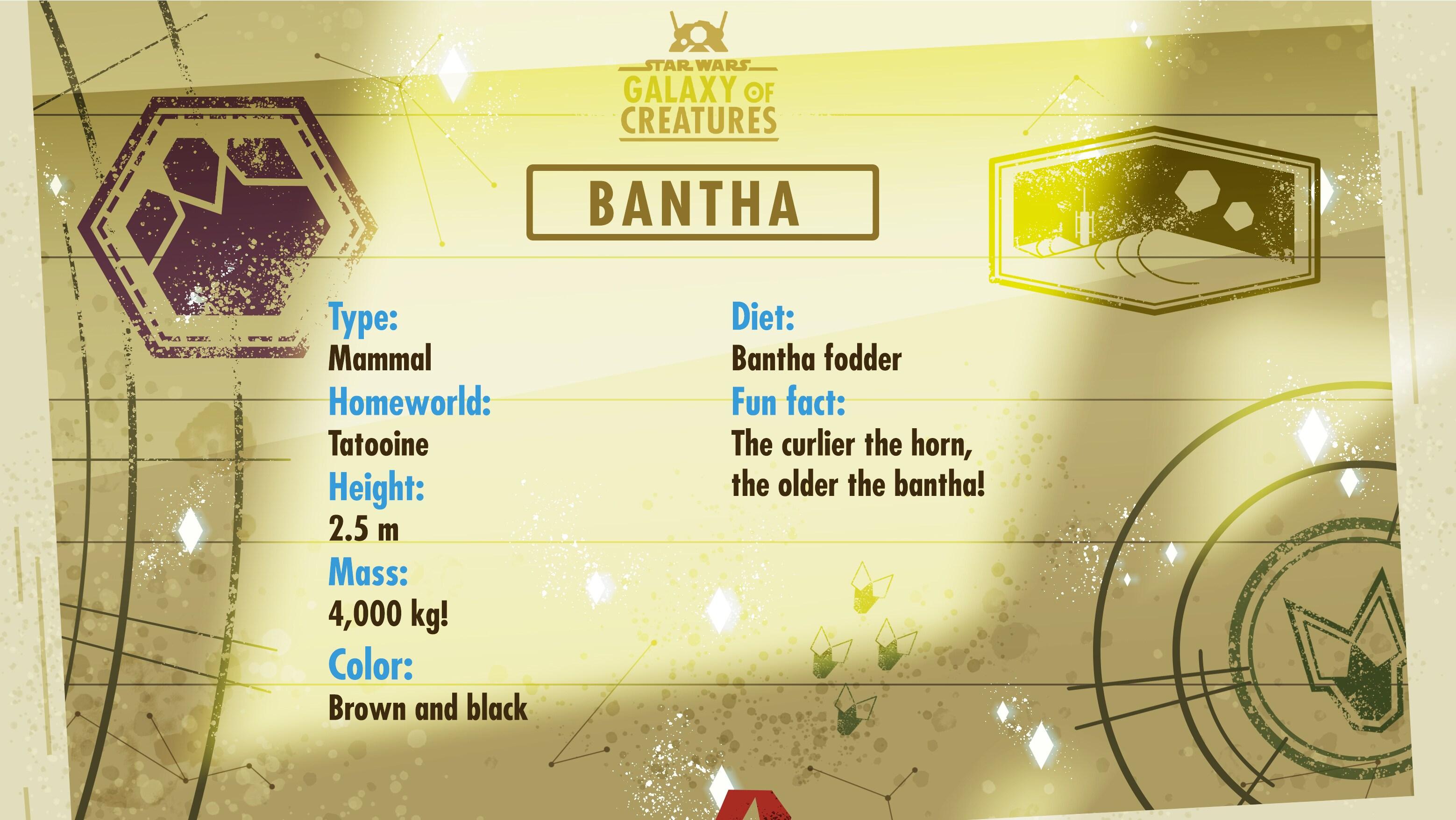 Bantha Bio Card