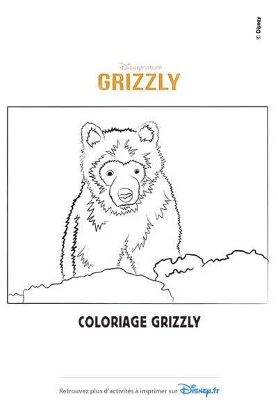 Coloriage Le petit Grizzly