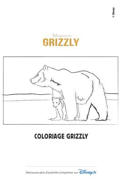 Coloriage La maman Grizzly et son petit