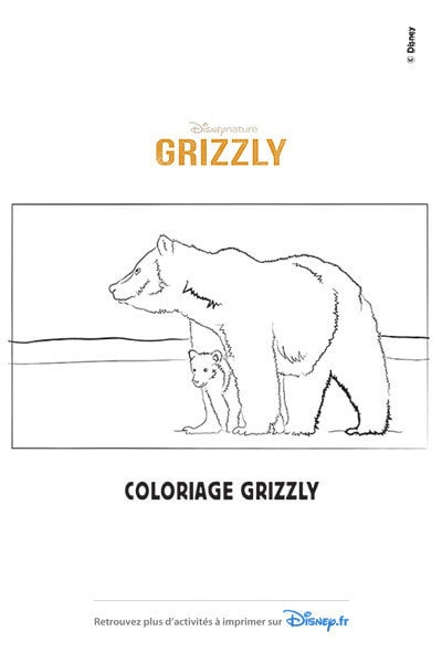 Coloriages disneynature - Dessin de grizzly ...
