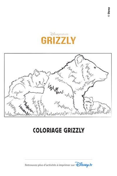 Coloriage La famille Grizzly