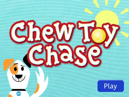 Chew Toy Chase