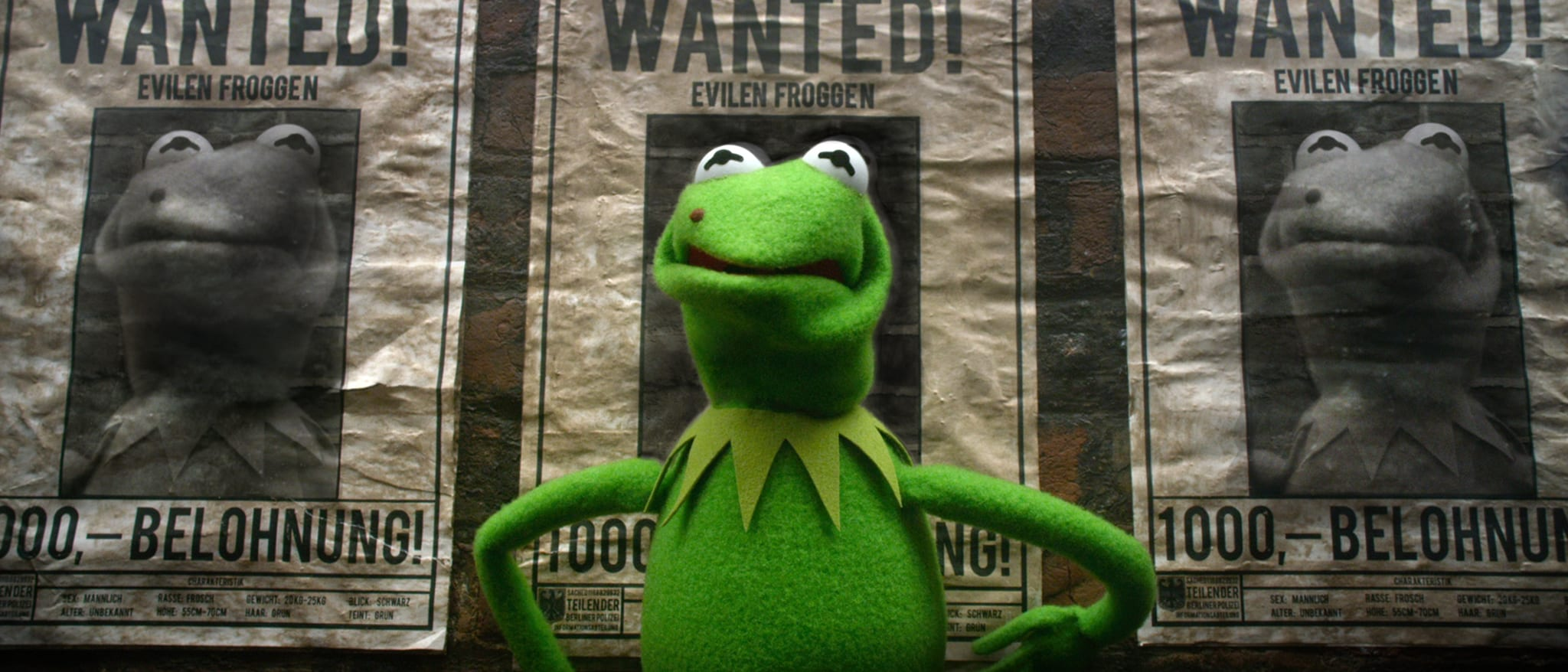 Muppets Most Wanted Hero