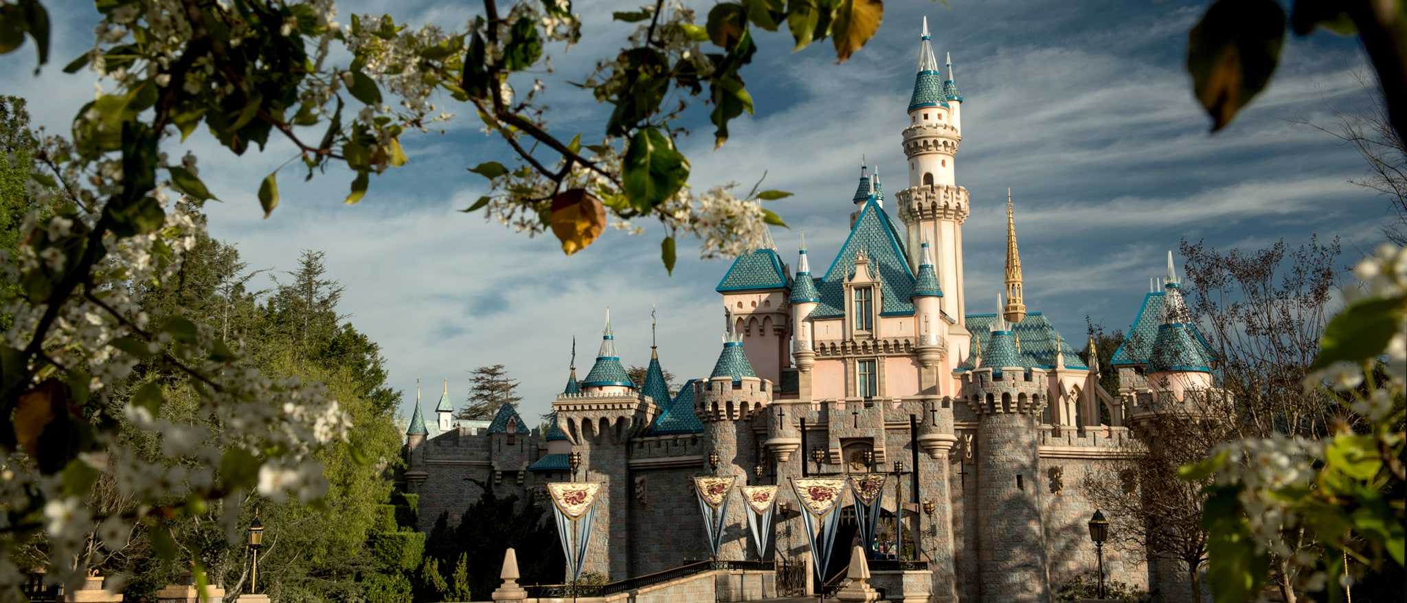 Disney Sing-Along-Songs: Disneyland Fun Hero