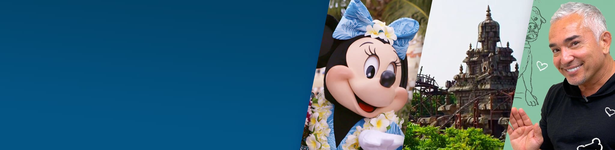 Hero - Disney Magic Moments - generic banner