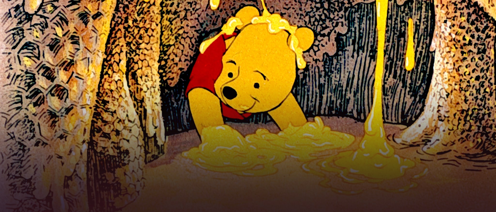 The Many Adventures of Winnie the Pooh Hero