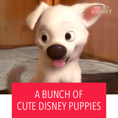 A BUNCH OF CUTE DISNEY PUPPIES