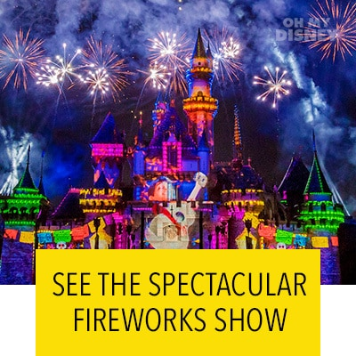THE NIGHTTIME SPECTACULAR