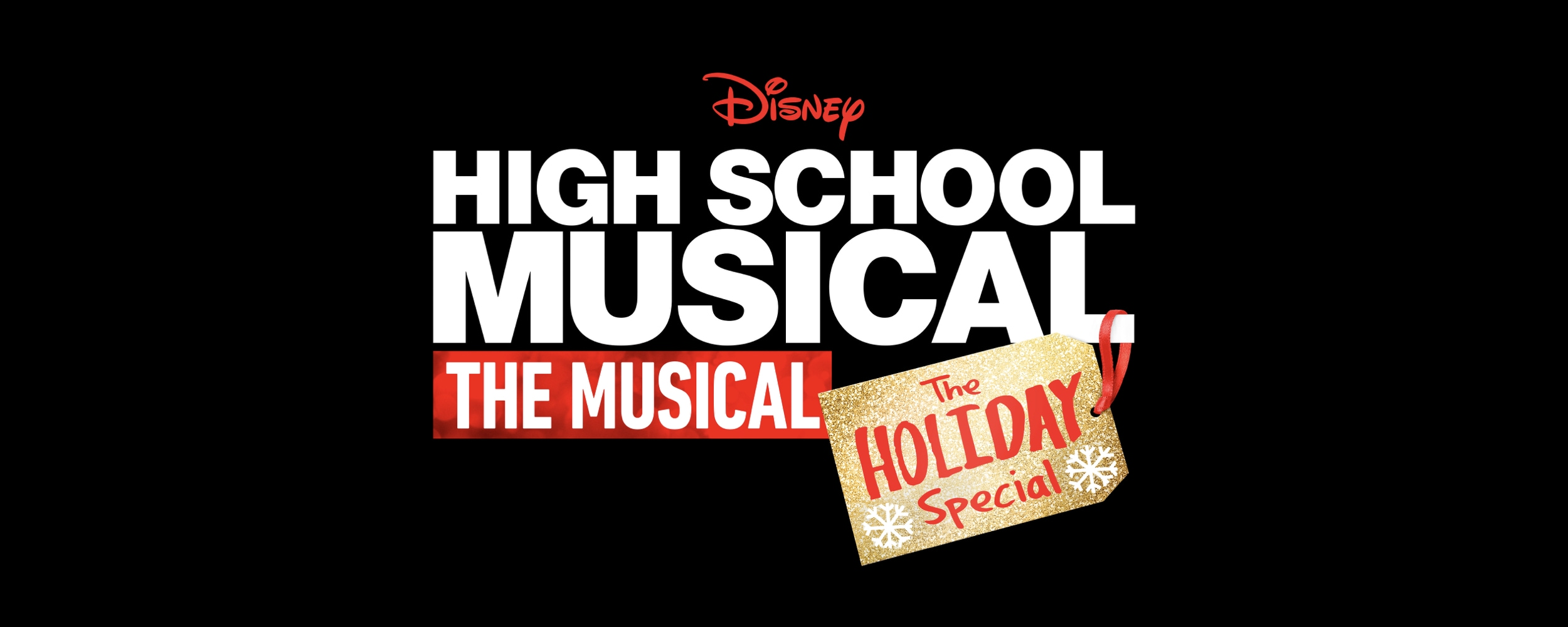 High School Musical: The Musical: The Holiday Special Media Kit