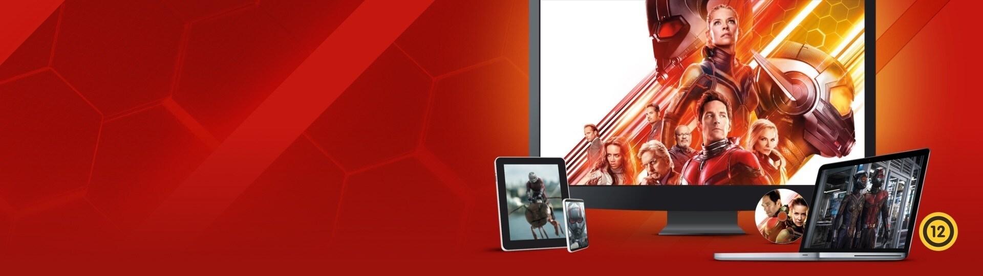 A Hangya és a Darázs | Kapható DVD-n és digitális formátumban