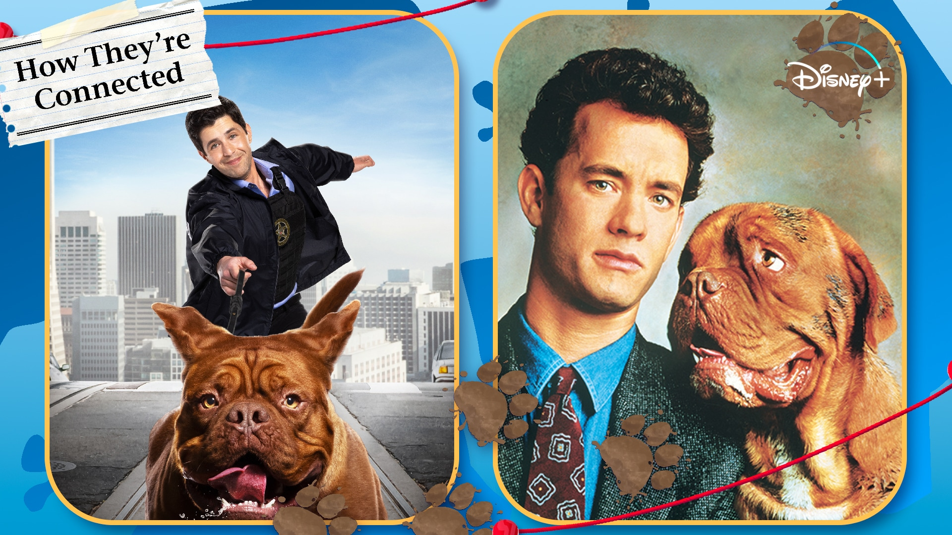 Turner & Hooch | How They're Connected | Disney+