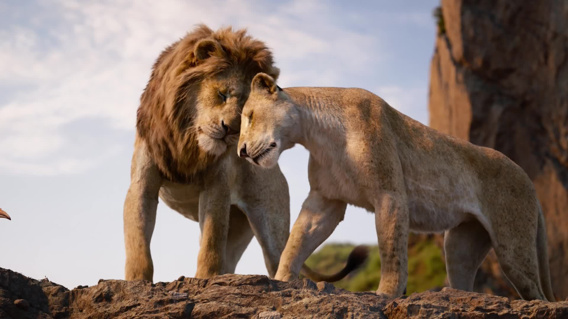 The Lion King |Take your place in the circle of life.
