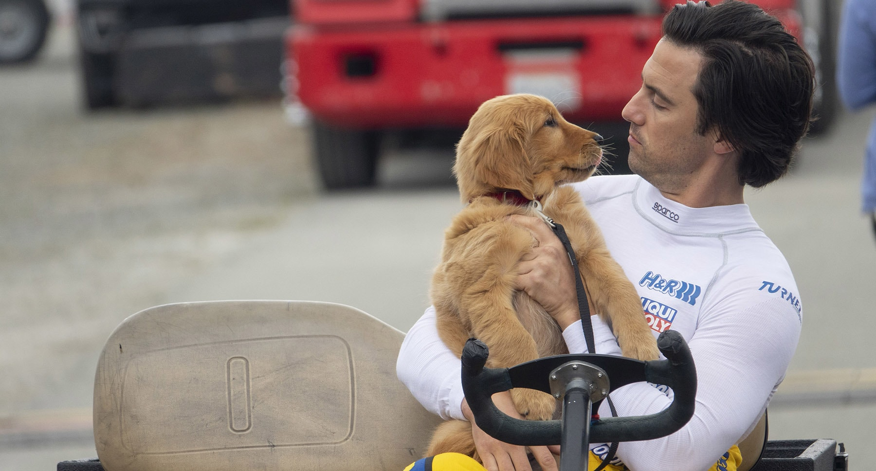 "Denny (Milo Ventimiglia) and puppy Enzo in the movie ""The Art of Racing in the Rain"""