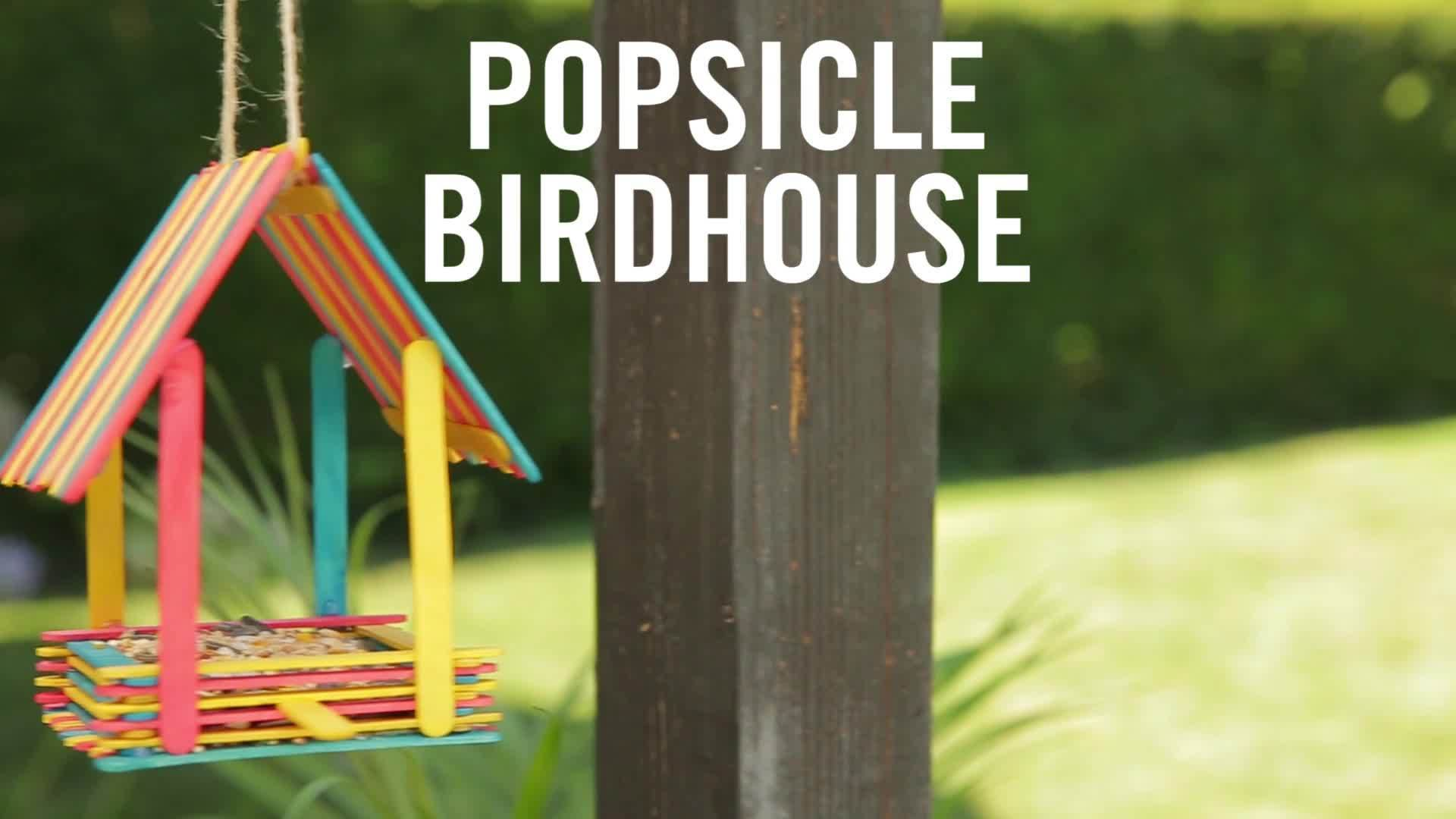 Disney DIY Popsicle Birdhouse