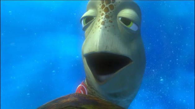 Procurando Nemo - Nadando na Austrália