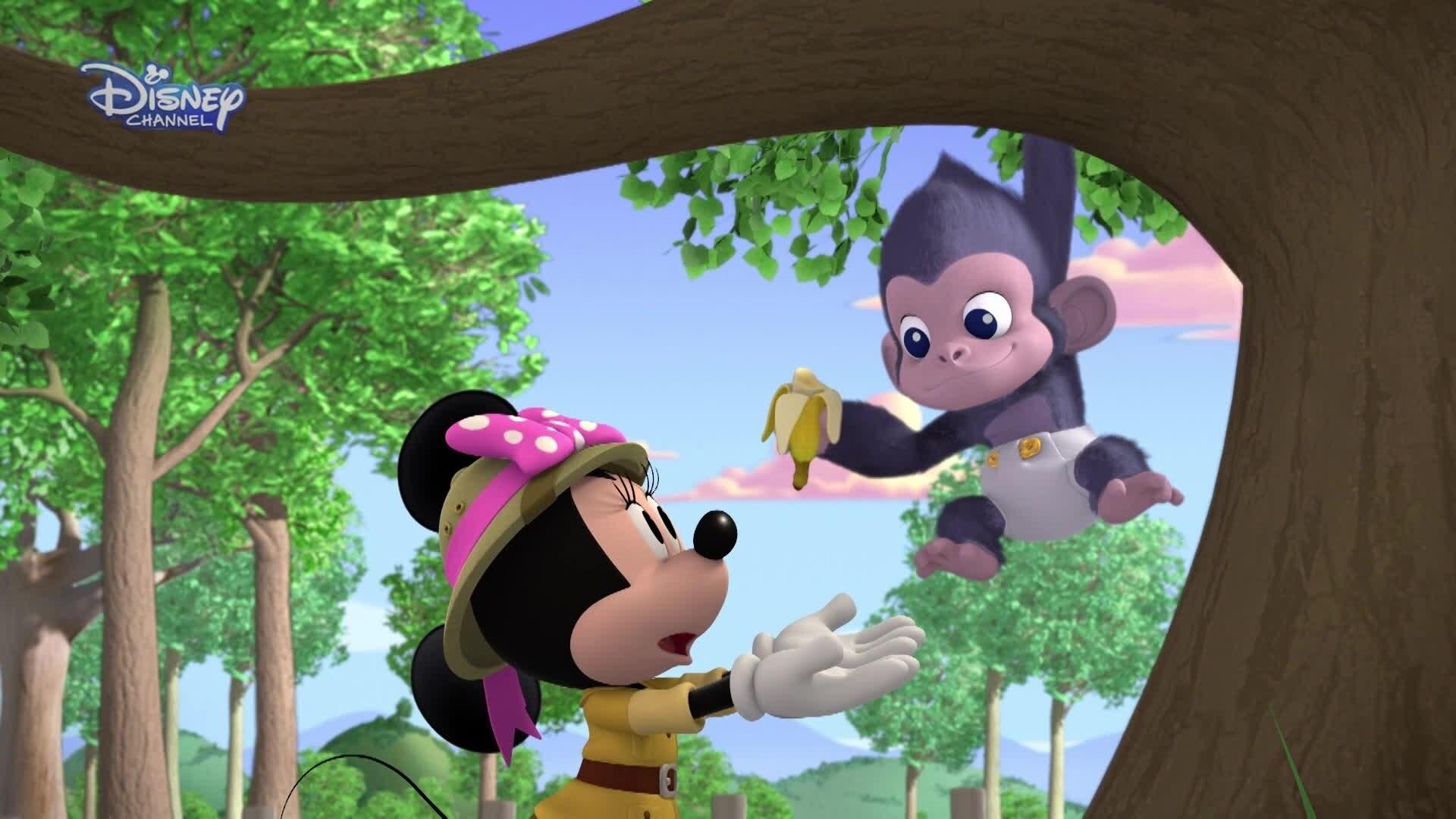 Веселите Помагачи и спасяването на горила