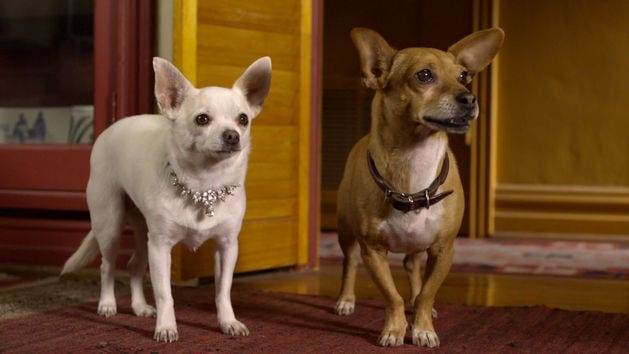 beverly chihuahua beverly hills chihuahua 2 disney movies 1417