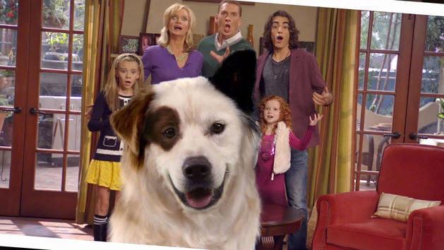 Intro - Stan, el perro bloguero