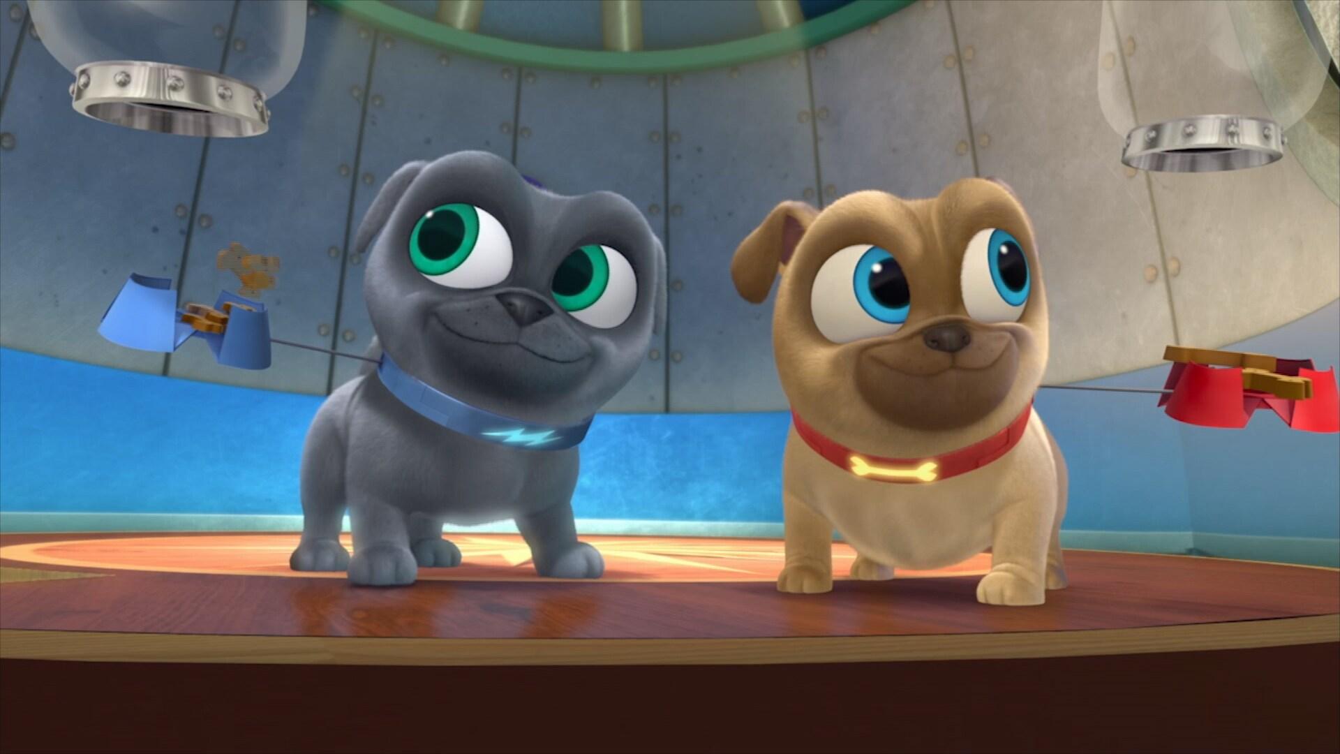 La canción de la misión de Puppy Dog Pals
