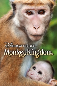 Disneynature: Monkey Kingdom