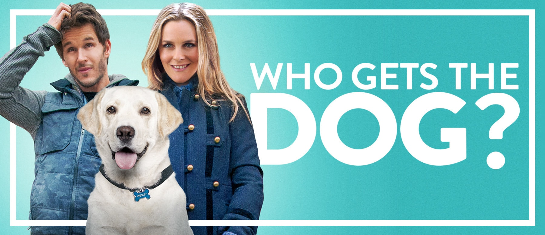 Who Gets The Dog? Hero