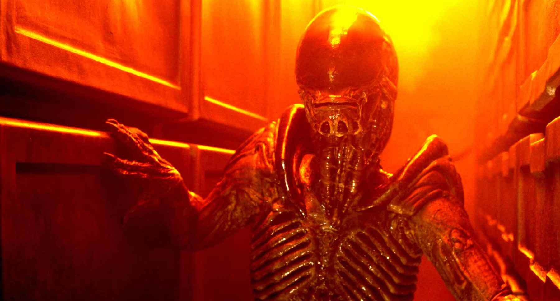"""An adult alien in a narrow hall in the movie """"Alien3"""""""