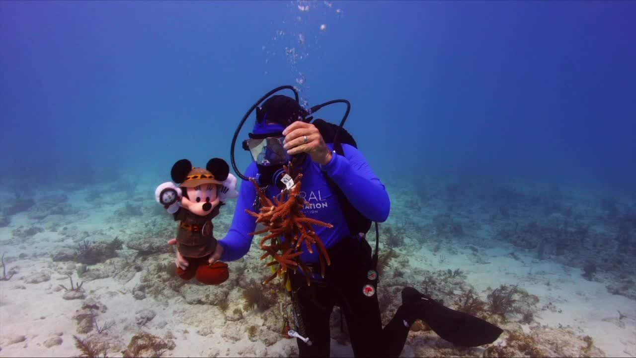 Conserve Nature - Coral Restoration Foundation